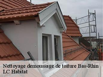 nettoyage et demoussage de toiture 67 bas rhin t l. Black Bedroom Furniture Sets. Home Design Ideas