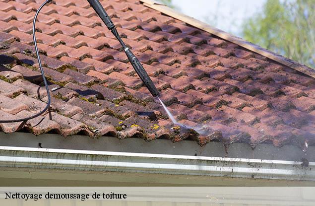 Nettoyage et demoussage de toiture à Altenstadt tél: 03.59.28.30.75