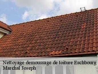 nettoyage toiture tuile cool en tanchit de toiture ville with nettoyage toiture tuile de. Black Bedroom Furniture Sets. Home Design Ideas