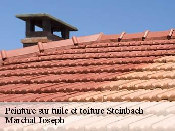 Peinture sur tuile à Steinbach tél: 03.39.05.11.65