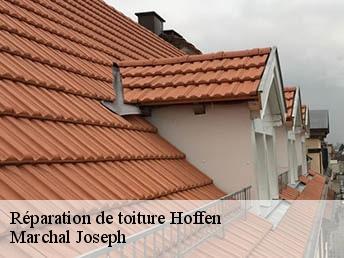 Réparation de toiture à Hoffen tél: 03.59.28.30.75